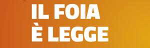 foia-freedom-of-informaction-act-italia-trasparenza